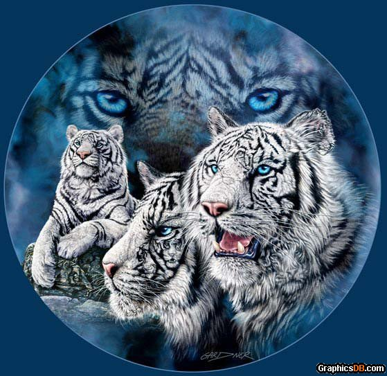 White Tiger Brothers
